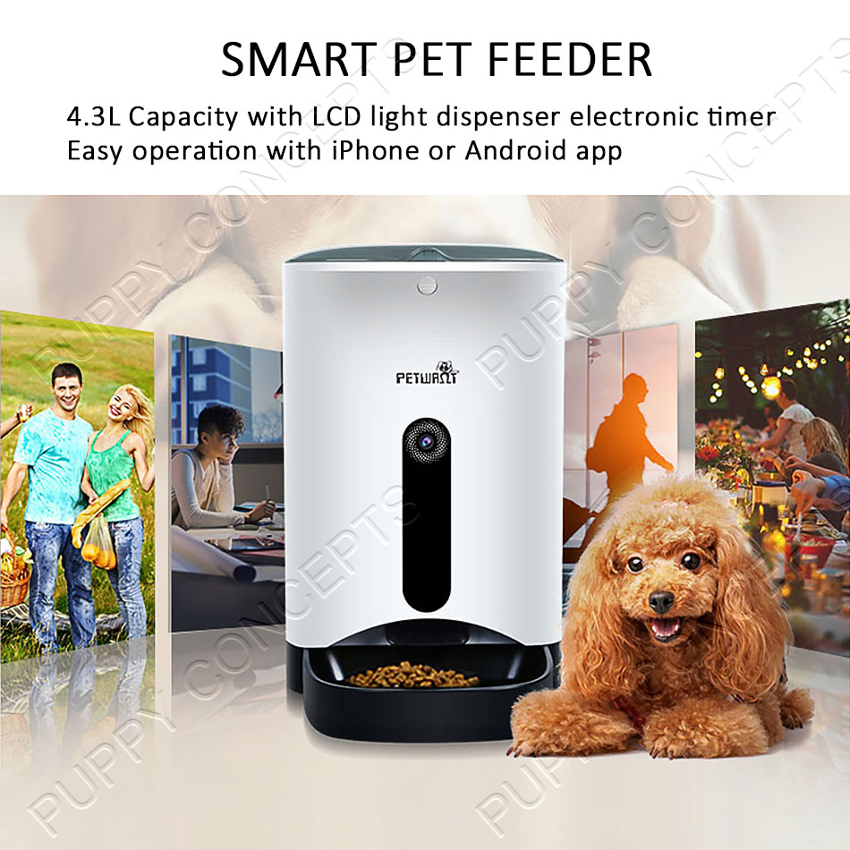 video safevant wifi supplies automatic camera recording two with audio hd way pet amazon wireless ca dp smart and feeder